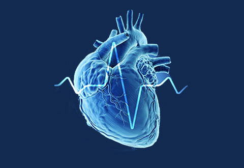 Shedding Light on Asian Cardiovascular Risk Through Technology: The SingHEART Study
