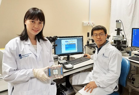 New technology boosts understanding of cancer cell activity